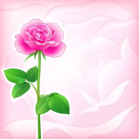 background with pink rose