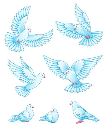 palomas volando: Set of pigeons - flying and sitting. Vector EPS10