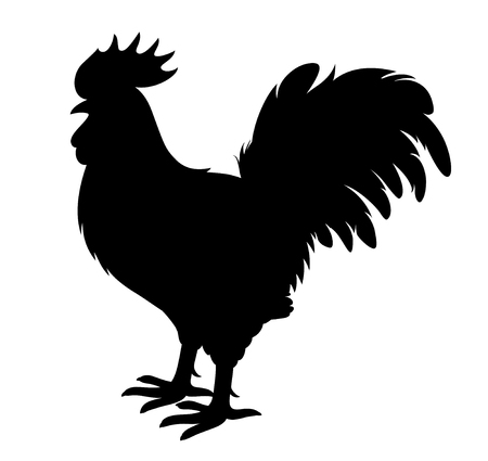 animal cock: Vector cock silhouette