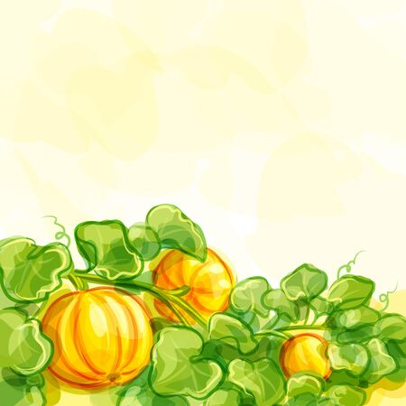 Vector background with pumpkins -