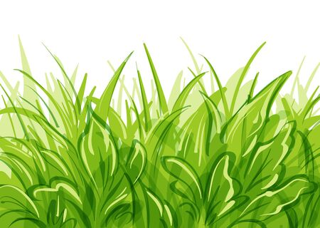Vector grass background. with transparency