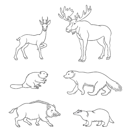 Set of stylized vector forest animals in contours.