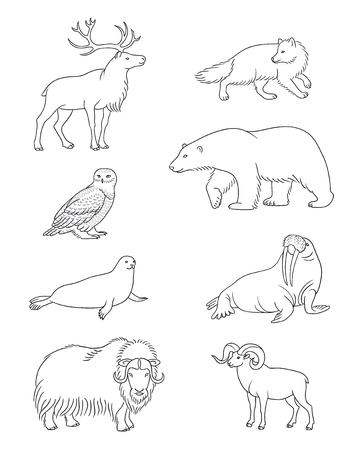 Set of stylized vector Arctic animals in contours.