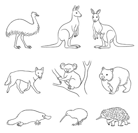 Set of stylized vector Australian animals in contours. EPS8 Çizim