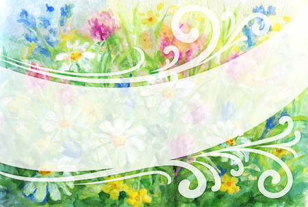 semitransparent: Floral background - wild flowers watercolor painting and semitransparent place for text.