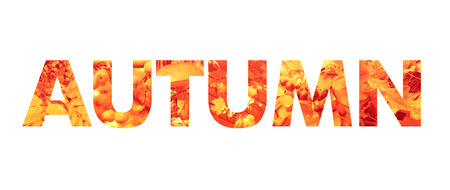 Autumn word - bold type filled with natural photo textures