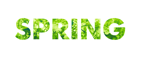 Spring word - bold type filled with natural photo textures Stock Photo