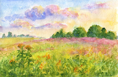 Summer meadows at sunset - watercolor landscape painting