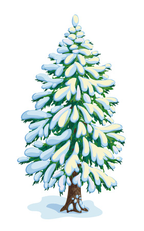 Big snow-covered fir tree. Vector drawing illustration.
