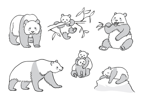 Pandas in outlines - adults and babies. Vector illustration.
