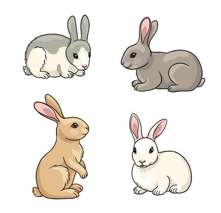 Rabbits in cartoon style. Vector illustration.