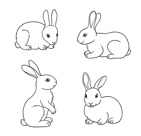 Rabbits in contours. Vector illustration.