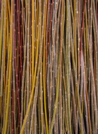 A lot of willow twigs - raw material for basket weaving