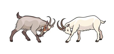 Butting goats. Vector illustration. EPS8