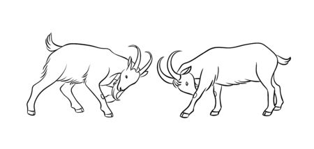 Butting goats in contours. Vector illustration. EPS8