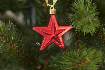 christmas star: Red star di Natale su albero di Natale Archivio Fotografico