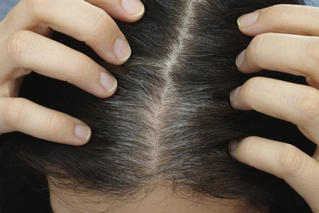 gray: Going gray. Young woman shows her gray hair roots. Stock Photo