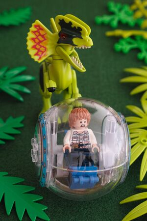 chased: Tambov, Russian Federation - June 24, 2015 Lego Jurassic park. Gray minifigure in a gyrosphere being chased by a dilophosaurus. Studio shot.