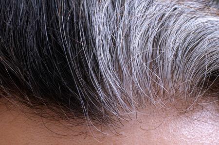 Going grijs. grijze vrouw en zwart haar wortels. Detailopname.