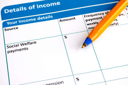 questionary: Details of income application form with ballpoint pen.