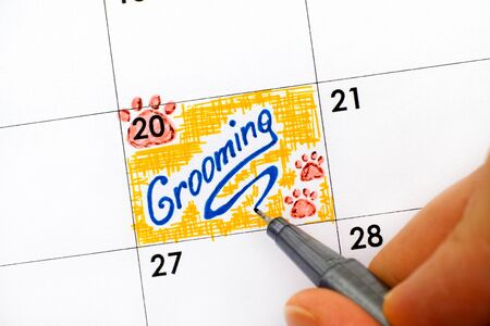 Woman fingers with pen writing reminder Grooming in calendar. Close-up. Stock Photo
