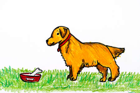 Golden retriever dog with his bowl on green grass. Child Pencil hand drawing.