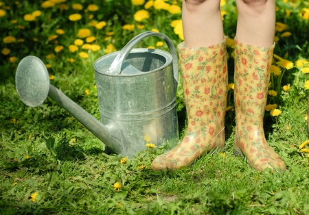 sprinkling: Waterpot and rubber boots on the background of green grass and dandelion Stock Photo