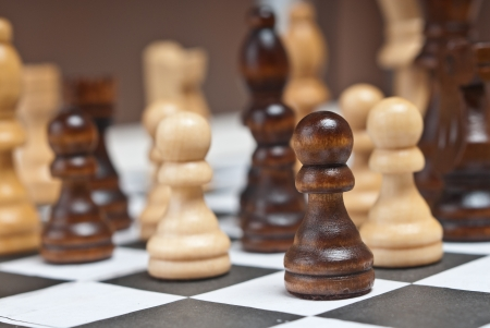 Chess in board photo