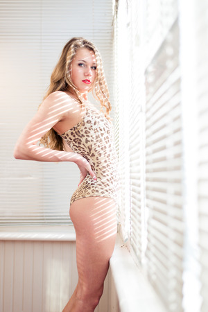 louver boards: portrait of attractive, seductive young woman in leopard or tiger bodysuit sitting on the balcony with shutters light on the background & looking at camera Stock Photo