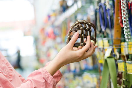 shop tender: closeup on female hands choosing stylish, trendy, modern muzzled for dogs on the supermarket shopping shelf background