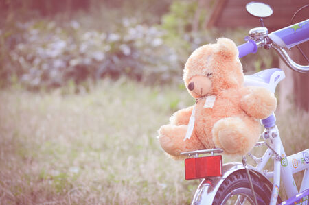 closeup on bear toy riding on the back of bicycle on green grass summer outdoors background photo