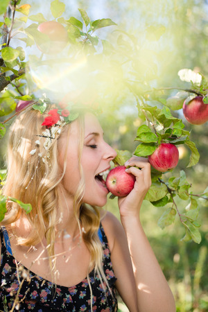 pretty apple fairy: young beautiful blond woman enjoying eating red apples with wreath of flowers & sun light flares of rays on green outdoors copy space background photo