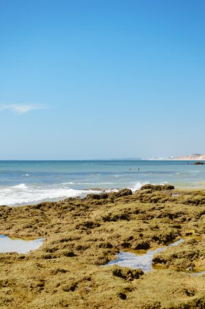 Beach at Olhos de Agua Algarve Portugal seascape and cliffs with palm trees and plants