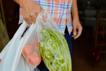 Human hand holding farmer market bag with natural vegetables. Copy space healthy looseweight nutrition lifestyle. Close up photography Zdjęcie Seryjne - 84853738