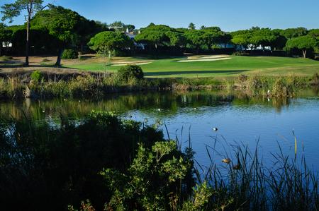 Journée ensoleillée et terrain de golf naturel panoramique à l'extérieur, fond de ciel lumineux. Espace de vie de loisirs de fitness de soleil