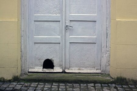 Old white dirty wooden front door with a cats hole