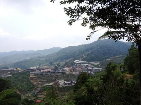 pahang: A view of Tanah Rata Cameron Highlands