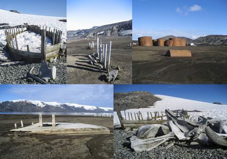 whaling: Remnants of the whaling industry in Antarctica - whale bones, whale boats and old whaling station