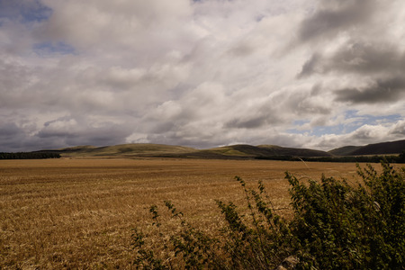 rolling landscapes: Scottish countryside landscape with rolling hills in the distance