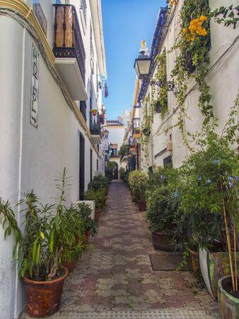 Belle rue carrelée étroite à Marbella Andalucia Espagne avec des bâtiments blanchis à la chaux et bordée de pots de fleurs