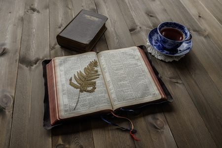 devotional: Religious scene of morning devotional with open leather bound Bible with pressed fern leaf, closed Bible and blue and white china cup and saucer with tea on wooden table