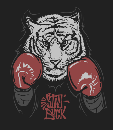 Tiger in boxing gloves and lettering print design for t-shirt Vectores