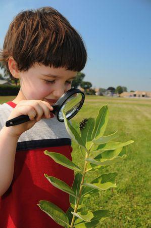 oruga: Un muchacho joven, en acerca de primer grado, mira estrechamente a una oruga de la hoja de una especie de plantas con una escuela en segundo plano