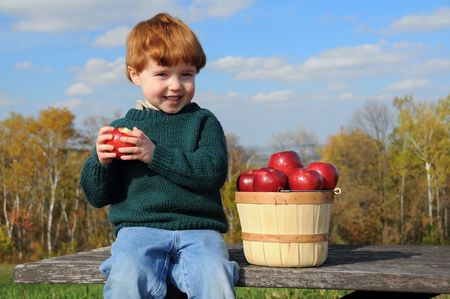 A little boy enjoys eating a Haralson apple while sitting on a picnic table with a bushel basket of the fruit photo