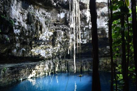 Cenote in Valladolid, Yucatan Stock Photo