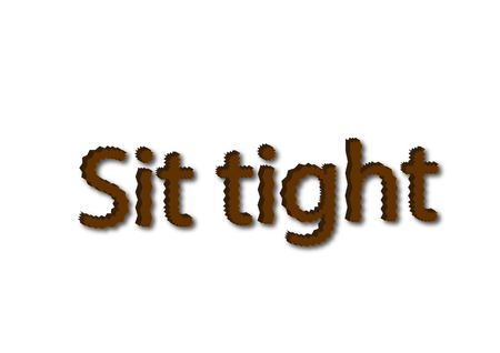 Illustration, brown sit tight idiom write isolated in a white background composition