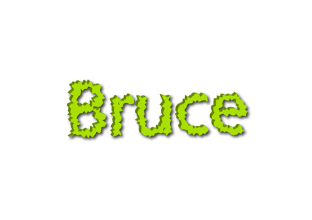 Illustration, name bruce isolated in a white background composition 写真素材