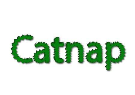 Illustration, idiom write Catnap isolated on a white background.