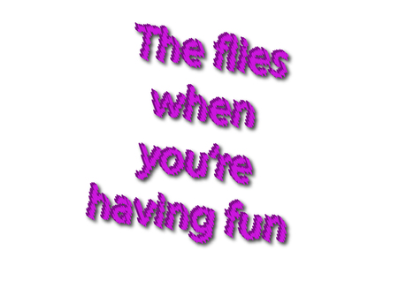 Illustration idiom write The flies when youre having fun isolated on a white background.