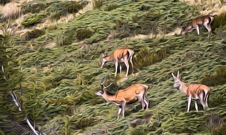 Group of deer on the alps illustration Stock Photo